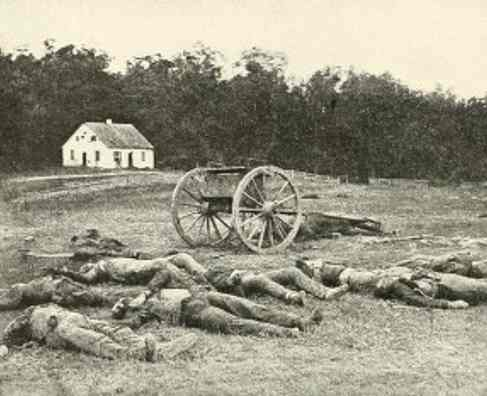 The dead on the field of Antietam